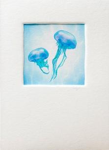 DeuxGlass_jellyfish